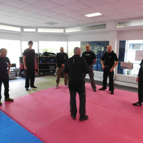 Protect Expert Educational Program - Krav Maga Instructor Development Course by Itay Gil